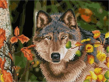 НИ Алмаз раскраска по номер 30х40 см с подр Волк в осеннем ...